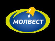 Воронежский МК